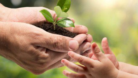 обучение экологической безопасности