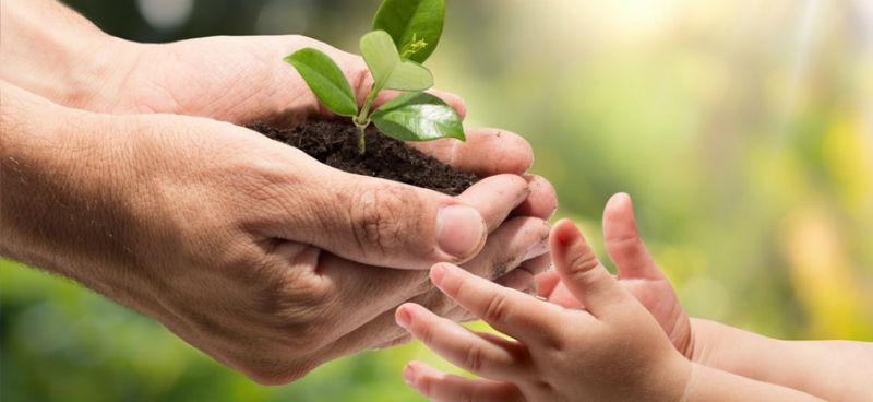 Комплексное обучение охрана окружающей среды: экологическая безопасность